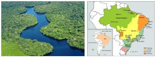 Brazilian Amazon region