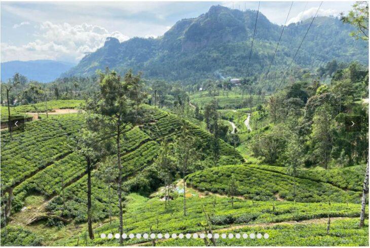 SRI LANKA - BIG ROUND TRIP FROM NORTH TO SOUTH 3